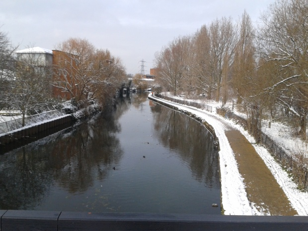 Regents Canal running through the marshes.