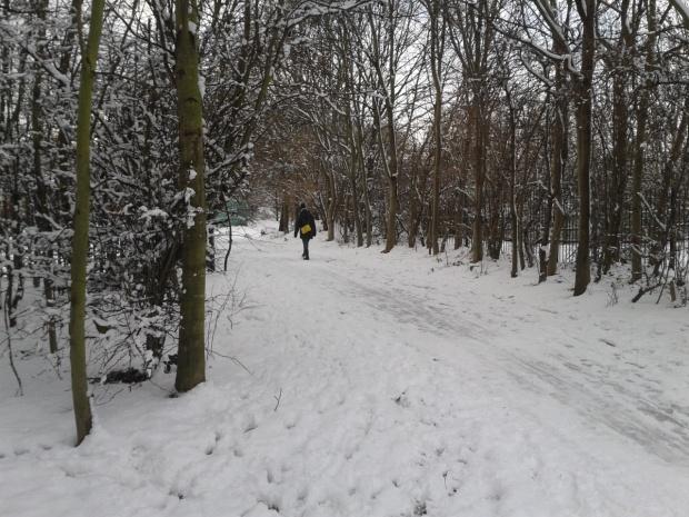#HackneyMarshes #snow